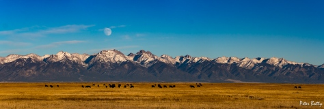 San Luis Valley moon rise 1500